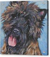 Cairn Terrier Brindle Acrylic Print by Lee Ann Shepard