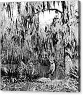 Cajuns Collecting Moss Acrylic Print
