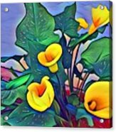 Cala Lily Caliente Acrylic Print