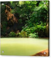 Caldeira Velha Thermal Pool Acrylic Print