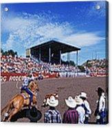 Calf Roping Event At Ellensburg Rodeo Acrylic Print