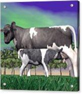Calf Suckling - 3d Render Acrylic Print