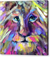 Calico Cat Acrylic Print