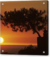 California, Big Sur Coast Acrylic Print