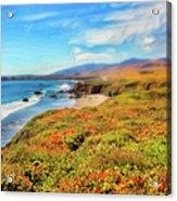 California Coast Wildflowers On Cliffs Ap Acrylic Print