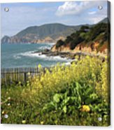 California Coast With Wildflowers And Fence Acrylic Print