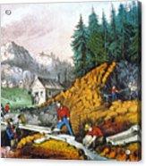 California: Gold Mining Acrylic Print
