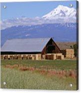 California Hay Barn Acrylic Print