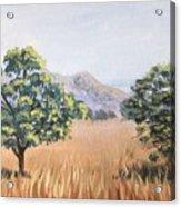 California Landscape. Fall Acrylic Print