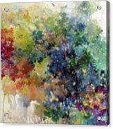 California Spring Acrylic Print