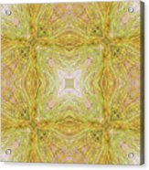 California Spring Oscillation Field Acrylic Print