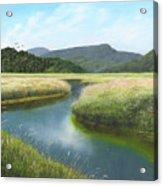 California Wetlands 2 Acrylic Print