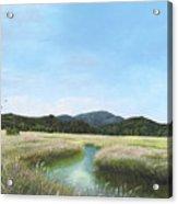 California Wetlands Acrylic Print