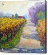 California Wine Country Acrylic Print