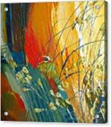 Call Of The Sun Acrylic Print