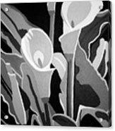 Calla Lilies Bw Acrylic Print