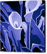 Calla Lilies Royal Acrylic Print