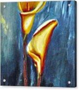 Calla Lilly Part C Acrylic Print