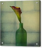 Calla Lily In Green Vase Acrylic Print