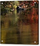 Calm Reflection Acrylic Print