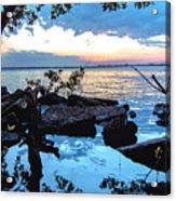 Caloosahatchee Mangroves Acrylic Print