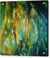 Camalot Acrylic Print