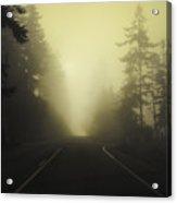 Camano Island Fog Acrylic Print