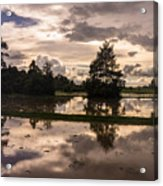 Cambodian Countryside Rice Fields Reflection Acrylic Print