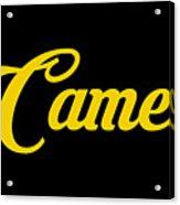 Camel-01 Acrylic Print