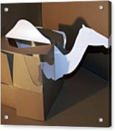 Camel 2 Acrylic Print