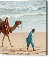 Camel Ride On Beach Acrylic Print