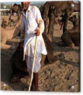 Camel Trader Pushkar Acrylic Print