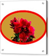 Camellia Bg Gold Acrylic Print
