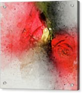 Camellia Burst Acrylic Print