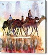 Camelrider Acrylic Print