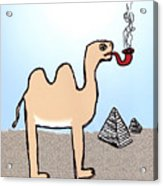 Camels Don't Smoke Pipes Acrylic Print