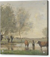 Camille Corot   Cows In A Marshy Landscape Acrylic Print