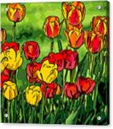 Camille's Tulips Acrylic Print