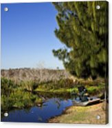 Camp Holly On The St Johns River In Florida Acrylic Print