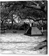 Camp Under Live Oaks Acrylic Print