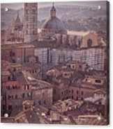 Campanile And Cathedral In Siena Italy Antique Matte Acrylic Print