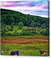 Canaan Valley Evening Impasto Acrylic Print