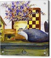 Canada And Checkerboard Acrylic Print