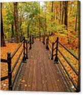 Canadian Autumnal Walkway Acrylic Print