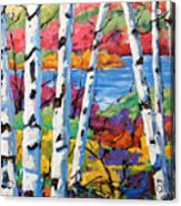 Canadian Birches By Prankearts Acrylic Print