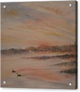 Canadian Geese At Sunset Acrylic Print