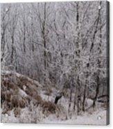 Canadian Ice Fog  Acrylic Print