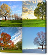 Canadian Seasons Acrylic Print by Mircea Costina Photography