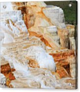 Canary Spring Mammoth Hot Springs Upper Terraces Acrylic Print