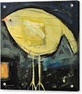 Canary Acrylic Print